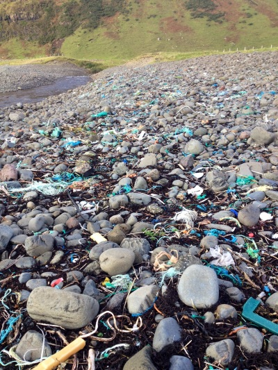 Thousands of small pieces of plastic debris, including scraps of fishing rope