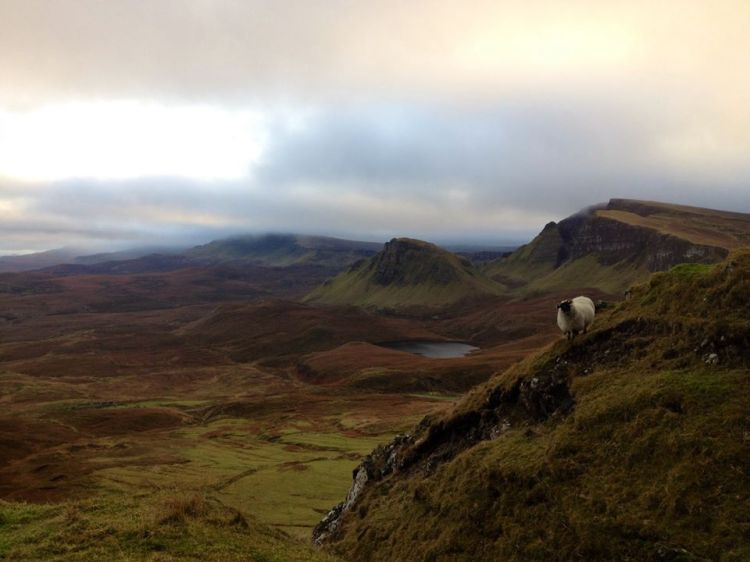 My first walk up the Quiraing (with the usual company)